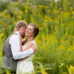 emotionally engaging pictures meadow yellow wildflowers
